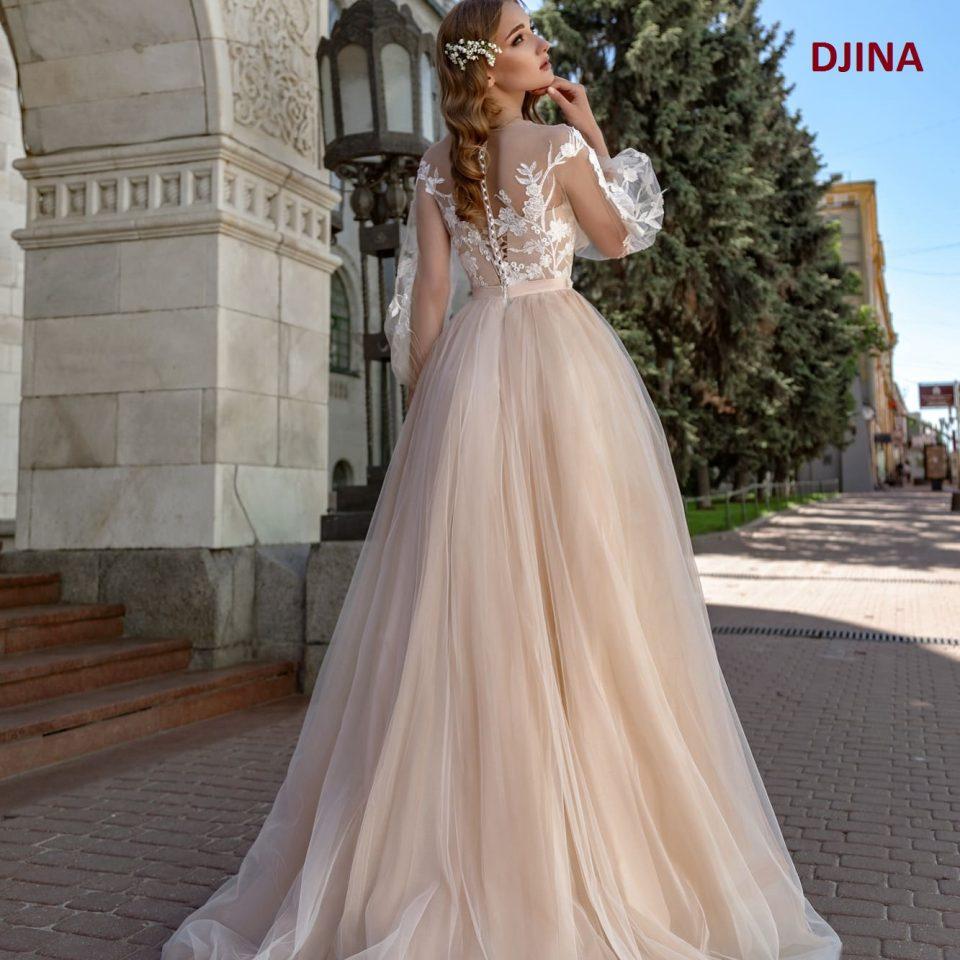 DGINA(rochii de meriasa 2020)